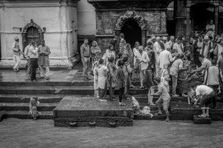 04-Funerale a Pashupatinath. Mentre si lava il corpo del morto, un cane si abbevera nel fiume Bashmati