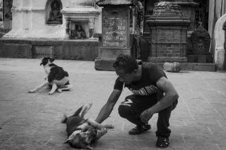 08-Locale che gioca con un randagio a Kathmandu