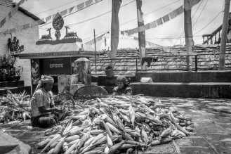 16-Le donne lavorano le pannocchie nel tempio buddista di Sirubari
