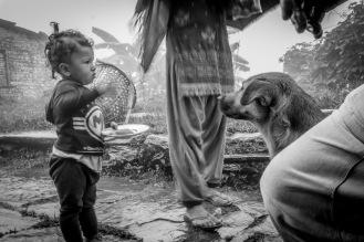 16-Una bimba locale incontra un randagio per strada, Shanti Stupa, Pokhara