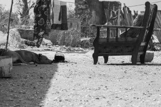 Un cane dorme davanti a un'abitazione. Villaggio di pescatori nei pressi di Toubacouta, Senegal ©Alessio Chiodi